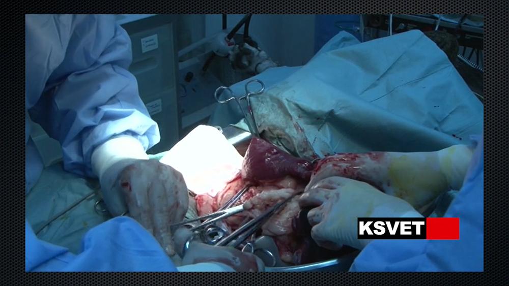 Tratamiento de neoplasia de bazo en perro cardiópata